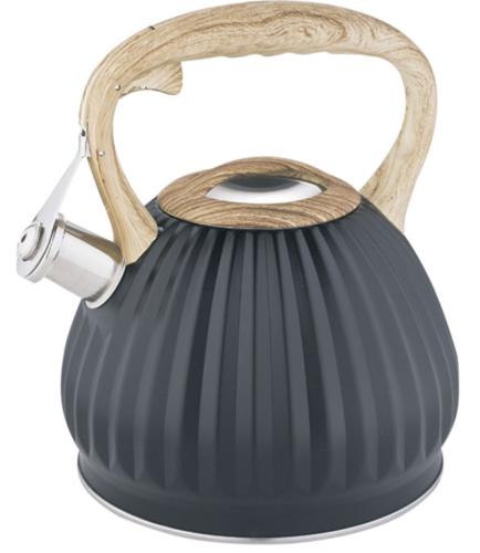 Чайник Alpenkok AK-529