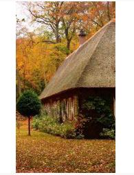 Обогреватель настенный Осенний пейзаж